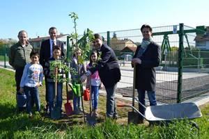 """Landau: Grundschule Horstring ist auf dem Weg zur """"Grünen Schule"""""""