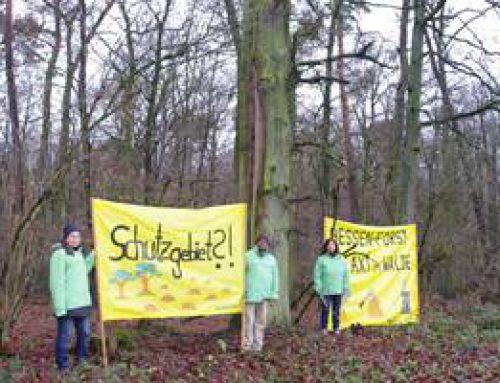 "Lampertheim: Greenpeace-Vortrag ""Notfall in unserem Wald"""